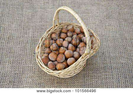 Hazel Nuts In Wicket Basket On Linen