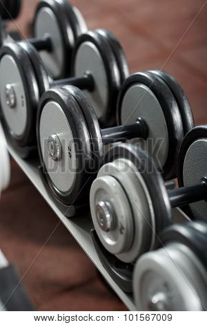 Dumbbells On The Rack In The Gym