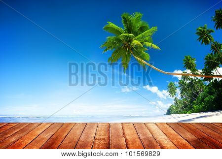 Beach Summer Relaxation Tranquil Scene Concept