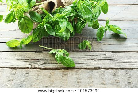 Green fresh basil in basket with sackcloth on table close up