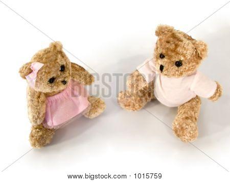 Bears_2