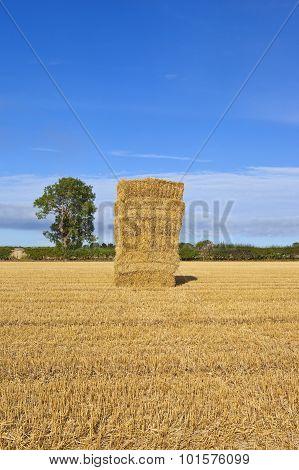 Autumn Straw Stack