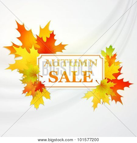 Autumnal frame with fallen leafs. . Vector illustration
