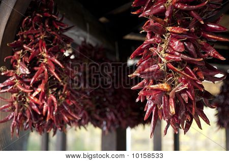 Dried Hungarian Red Pepper