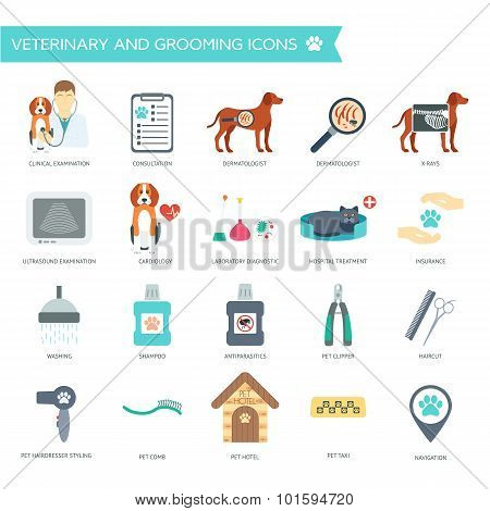 Set Of Veterinary And Grooming Icons With Names. Flat Design. Vector