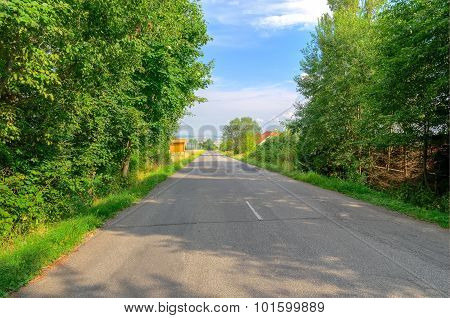Road in the countryside.