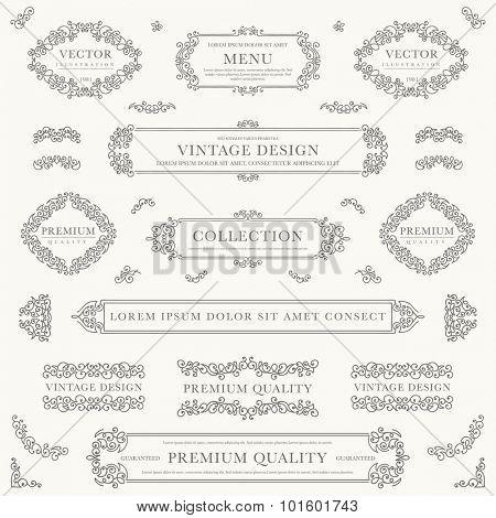 Set of decorative vintage design elements for label, logo, emblem design.