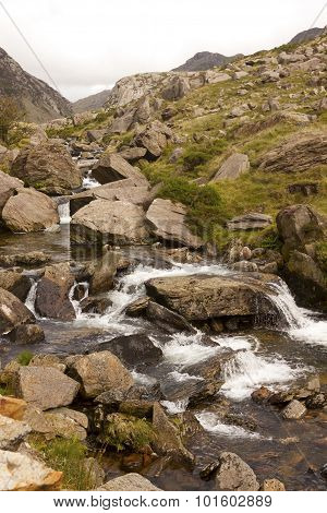 The Mountain Stream
