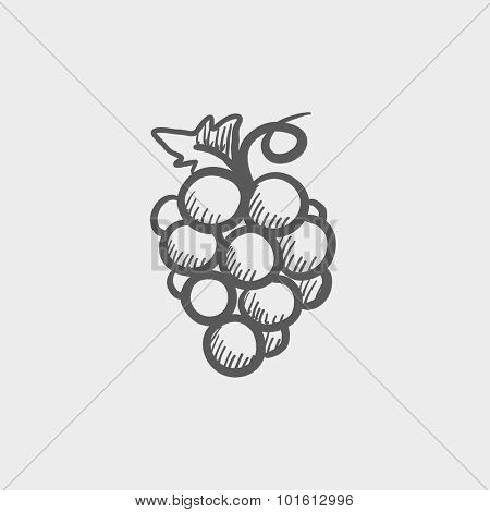 Bunch of grapes sketch icon for web, mobile and infographics. Hand drawn vector dark grey icon isolated on light grey background.