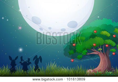 Nature scene on fullmoon night illustration