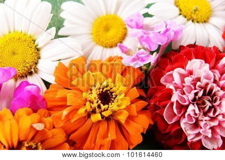 Fresh colorful flowers background