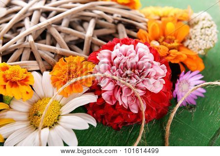 Fresh colorful flowers, closeup