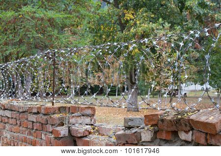 Old Brick Wall With Barbed Wire