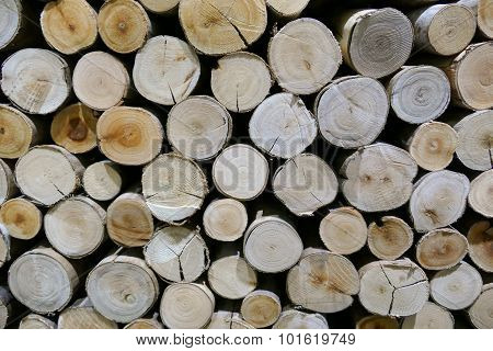 Log Surface For Background Texture