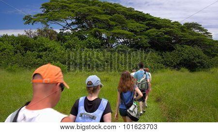 Tourists Hiking Along The Kona Coast On The Big Island Of Hawaii