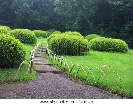 Tokyo Garden