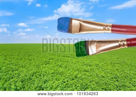 Paintbrushes On Agrarian Field Under Blue Sky