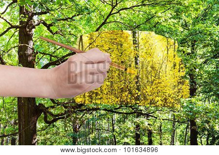Paintbrush Paints Yellow Leaves In Green Forest