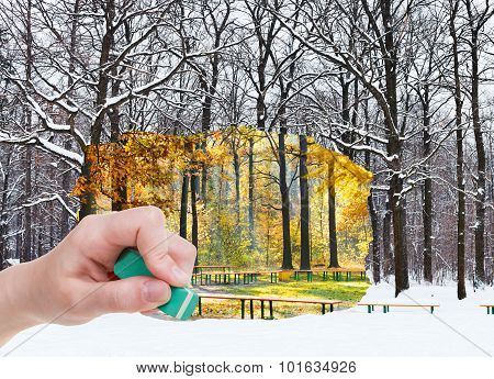 Eraser Erases Autumn And Winter Woods Is Appearing