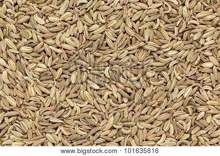 Organic Fennel seed.