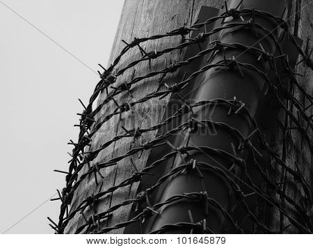 barbed wire around a telegraph pole dark moody dangerous