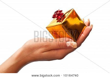 Female Hand Holding Gift Box