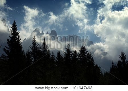 mountain range and alpine forest