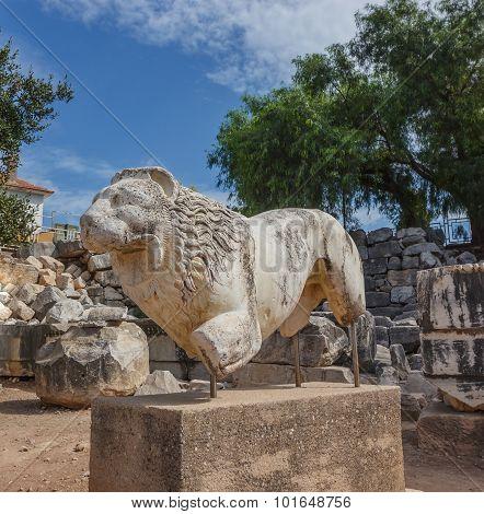 Statue Lion In Didim