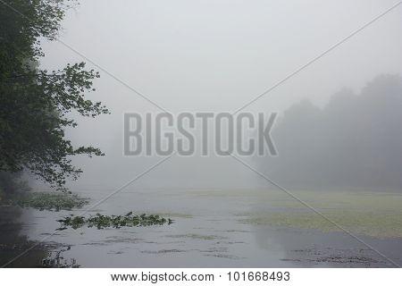 Dense Fog On Lake