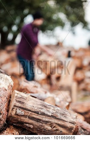 Fresh Wood.