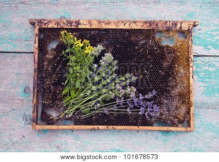 Herbs And Honeycomb On Rustic Wooden Background