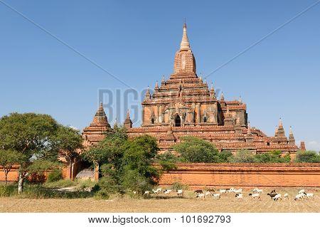 Myanmar (burma), Bagan, Sulamani Pahto Temple