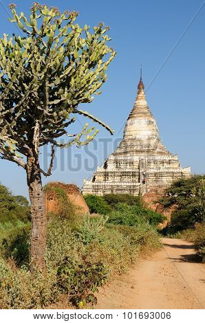 Myanmar (burma), Shwesandaw Paya Temple In Bagan