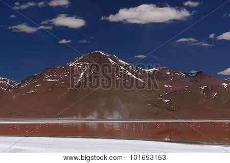 Bolivia,, Reserva Nacional De Fauna Andina Eduardo Avaroa