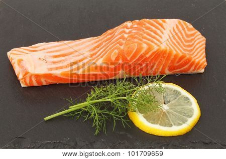 Sea Trout On Slate