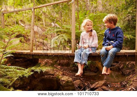 Young siblings sitting on a bridge in a forest