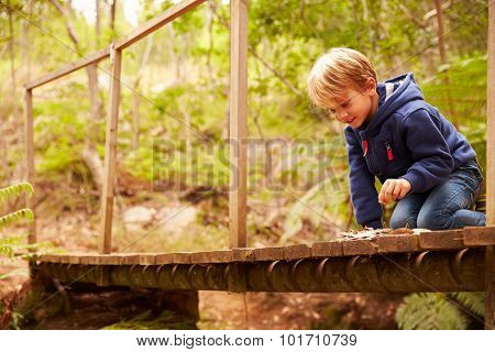Toddler boy playing on a wooden bridge in a forest