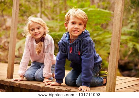 Young siblings sitting on a bridge in a forest, portrait
