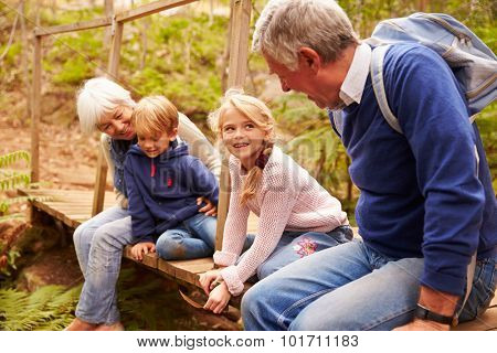 Grandparents sitting with grandkids on wooden bridge