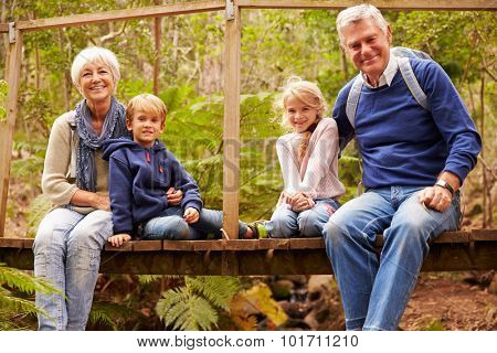 Grandparents with grandkids on bridge in a forest, portrait