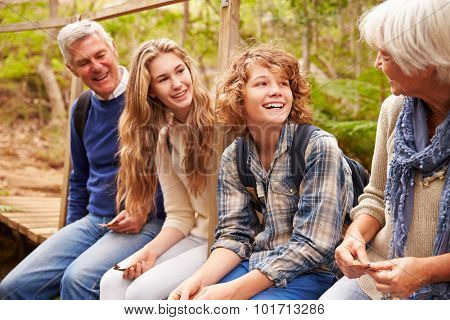 Grandparents and teens sit on bridge in a forest, side view