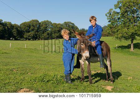 Farm boys riding on their donkey