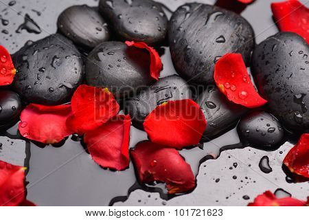 Red rose petals and wet stones