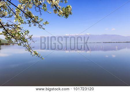 Kerkini Lake And Mountain Eco-area At North Greece By Struma River