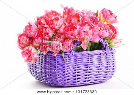 basket full of tulips - flowers and plants