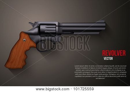 Background of Black gun metal Revolver