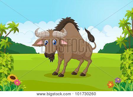 Cartoon animal wildebeest in the jungle