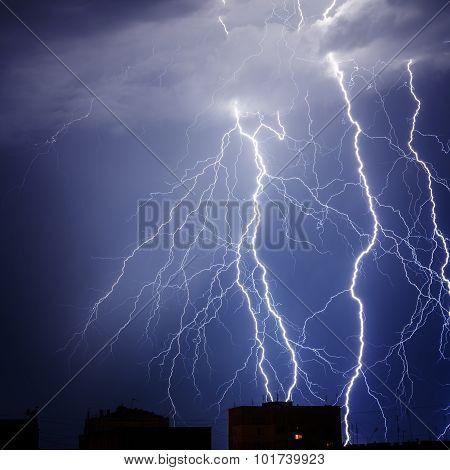 Branched Lightning
