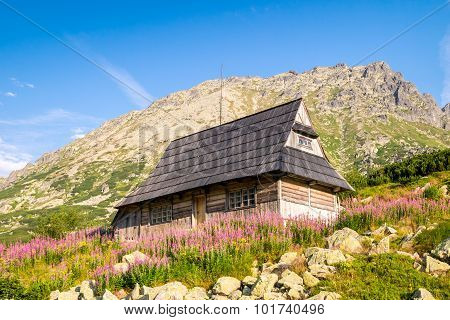 Wooden Hut On Flowery Meadow In Tatra Mountains