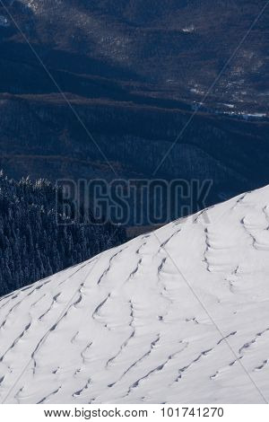 Winter mountain slope and forest, snow surface created by a wind.